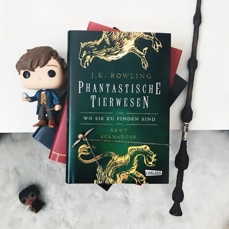 Harry Potter Hogwarts Schoolbooks